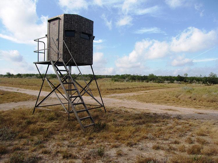 Walker Texas Rancher Wildlife Ranch And Livestock